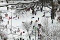 New Yorkers enjoy a dusting of snow in Brooklyn's Prospect Park after a major winter storm skirted the city on Tuesday.Photo: AFP
