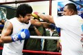 Philippines hero Manny Pacquiao is already well into his training camp for the Floyd Mayweather fight. Photo: AFP