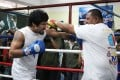 Pacquiao hits mobile punching bag Buboy Fernandez in training last month. Photo: AP