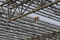 Labourers work at a construction site of a Chinese railway. Photo: Reuters