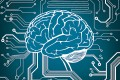 Neuroscience has many possible applications for technology. Photo: Shutterstock