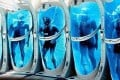 It may sound like a Saturday night movie plot, but restoring people from cryogenic suspension could be commonplace in a few decades, some scientists say. Photo: Handout