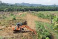 Forests being cleared in Malaysian Borneo. Photo: Kyodo