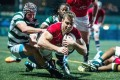 Hong Kong scrum-half Tom Marshall dives over to score against Zimbabwe in their Cup of Nations match on Friday. Photos: HKRU