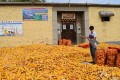 The courtyard of Peng Liyuan's childhood home, in Peng village, Shandong province, is now used to process corn. Photos: Hazel Knowles; Reuters; AFP; Xinhua; Corbis