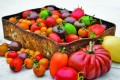 Eco-friendly produce is becoming more popular