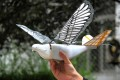 Engineers at Northwestern Polytechnical University in China's Xi'an made these birdlike drones. (Picture: Northwestern Polytechnical University)