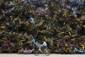 Piles of dumped bikes can be seen in many Chinese cities. (Picture: Bloomberg)