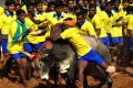 "In the centuries-old festival of Jallikattu, which means ""bull-taming"", bulls are let loose and young men compete to subdue them. Photo: AFP"