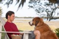 Benjamin Walker and dog in The Choice (Category: IIA), directed by Ross Katz and co-starring Teresa Palmer .