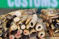 Seized ivory tusks on display at a Hong Kong Customs press conference. Photo: AFP