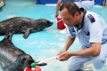 Ocean Park staff with Rose, a harbour seal, who underwent a successful operation to remove cataracts on her right eye last year. Photo: Bruce Yan