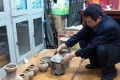 A man examines the confiscated artefacts that were dug up from an ancient Chinese tomb found in a backyard in Shaanxi province. Photo: China Business View