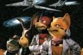 Fox and his animal squad.