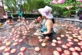 Bobbing for apples. A woman bather eats an apple in the hotspring. Photo: Youth.cn.