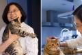 President Tsai Ing-wen with her two feline pets, Xiang Xiang and Ah Tsai. Photo: SCMP Pictures