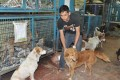 A volunteer from a NGO, Friendicoes, takes care of street dogs. Photo: Kyodo