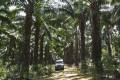 The Land Rover navigates a bone-crunching dirt road.