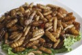 A mixed dish of deep-fried insects at People of Yunnan restaurant in San Po Kong. Photo: K.Y. Cheng