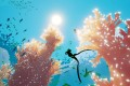 The undersea odyssey Abzu is the latest game from visionary designer Matt Nava. Photo: AP