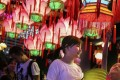 A variety of lantern installations drew visitors to Victoria Park in Causeway Bay on Thursday. Photo: Sam Tsang