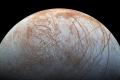 Photo: NASA / Jet Propulsion Lab-Caltech / SETI Institute