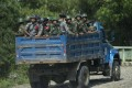 An October 2016 photo of troops and police travelling through Maungdaw, Rakhine State. Photo: AFP