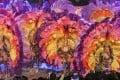 The Carnaval de Colores dancers from Spain. Photo: Edmond So