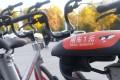 MoBikes in Beijing. Photo: SCMP Handout