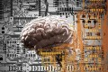 The tech industry has already already embedding cognitive (conscious mental activities such as human thinking, understanding, learning) AI into a variety of products. Photo: Alamy