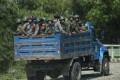 Armed military troops and police force travelling in trucks through Maungdaw, located in Rakhine State. File photo: AFP