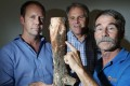 Showing an example of brown root rot disease are (from left) Paul Barber, Philip Cannon and Kevin Eckert. Photo: Nora Tam
