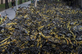 A worker from the bike share company Ofo puts a damaged bike on a pile at a makeshift repair depot for the company where thousands of derelict bikes are being kept after coming off the road on March 29, 2017 in Beijing, China. Photo: Kevin Frayer/Getty Images