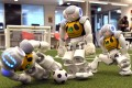 Three robots battle it out for the soccer ball in Sydney on July 21, as Australia's five-time world champions of robot soccer, the University of New South Wales' Runswift team, heads to Nagoya, Japan for the RoboCup World Championships this month. Photo: AFP