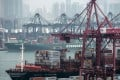 Container ships sit moored next to shipping containers and gantry cranes at the Kwai Tsing Container Terminals. Photo: Bloomberg