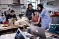 """This May 5 photo shows employees of the e-commerce startup """"gogoand"""" working on their website in Shanghai. Hordes of Chinese millennials are speaking directly to the country's 700 million smartphone users, streaming their lives to lucrative effect, fronting brands and launching businesses. Photo: AFP"""