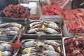 A variety of fish and shellfish tempts seafood lovers at the Gwangjang Market in Seoul. Photo: Susan Jung