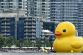 A 19-metre-tall (61-foot-tall) rubber duck floats in Toronto Harbour n Toronto, Canada, 01 July, 2017. The duck was in the city as part of the celebrations to mark Canada's 150th birthday. Toronto is Canada's largest city with a population of about 2.8 million people. Photo: EPA