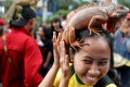It's not just dogs that are proving popular in Jakarta. Photo: Reuters