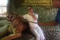 A tourist poses with a roaring tiger being prodded by a Pattaya zoo staff. Photo: AFP
