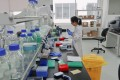 A scientist works at a drug development facility in Shanghai. Photo: Reuters