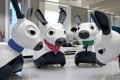 Three of the robotic MiRo 'dogs' . Photo: Consequential Robotics