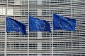 European Union flags outside the EU Commission headquarters in Brussels. Different views on who was to blame for the bloc's financial troubles are hindering its search for common solution. Photo: Reuters