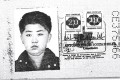 A scan obtained by Reuters shows an authentic Brazilian passport issued to North Korea's leader Kim Jong-un. Handout via REUTERS