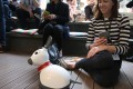 Companion robot Miro, designed to help elderly people and the disabled, being shown by Consequential Robotics at the Great Festival of Innovation in Hong Kong in March.