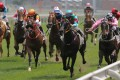 Beijing has endorsed horse racing on Hainan. Photo: Kenneth Chan