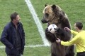 A bear performs before a Russian second division match in Pyatigorsk. Photo: AP