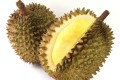 Durian is a tropical fruit known for its strong smell. Photo: Shutterstock