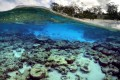 The reef and beach at Lady Elliot Island in Queensland, Australia. Photo: Reuters