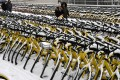 Snow-covered Ofo bicycles parked at the roadside in Zhengzhou, capital of central China's Henan Province. Photo: Xinhua